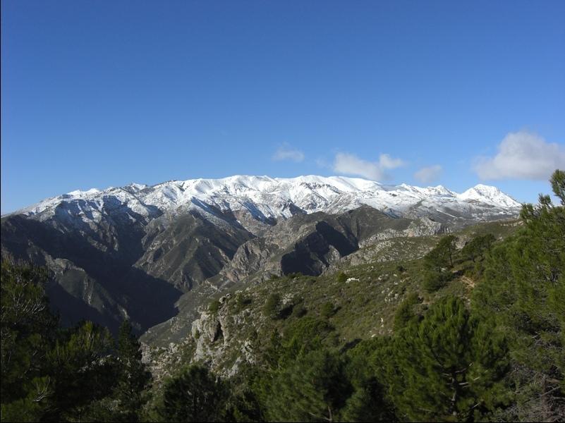 Valle-del-Río-Verde-2